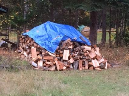 wood-pile